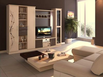 Мебель в гостинную комнату