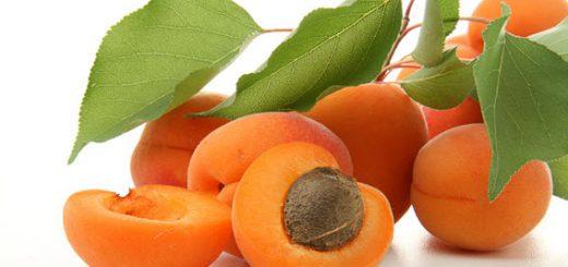 Абрикосы - источник здоровья и долголетия
