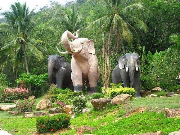 Остров-слон: Ко Чанг