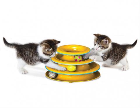 Как играть с кошкой? Игрушки помогут