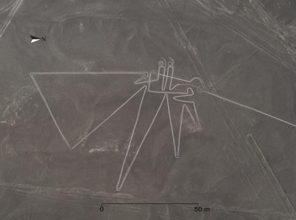 Удивительное открытие в пустыне Наска. Ученые показали фотографии новых геоглифов