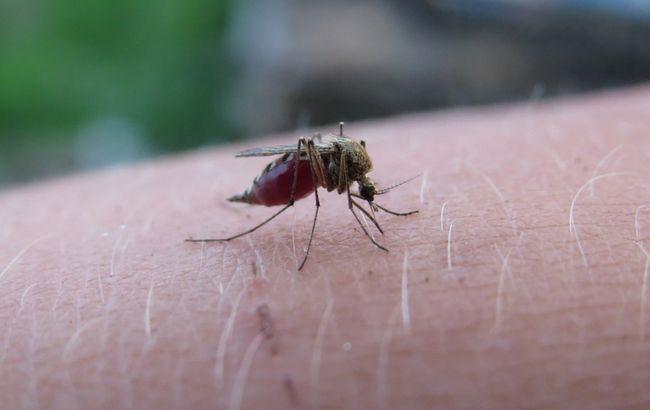 Українцям через погоду загрожує серйозна інфекційна хвороба